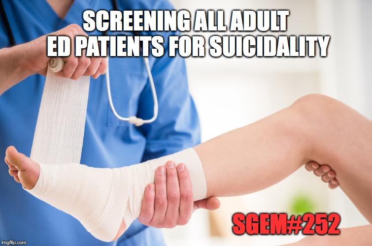 SGEM Memes #252