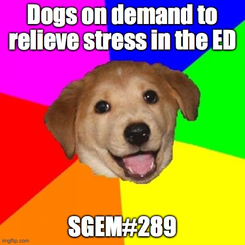 SGEM Memes #289