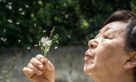 SGEM#324: Blow Away, Blow Away, Blow Away – Spirometry for Discharging Older Patients with Rib Fractures