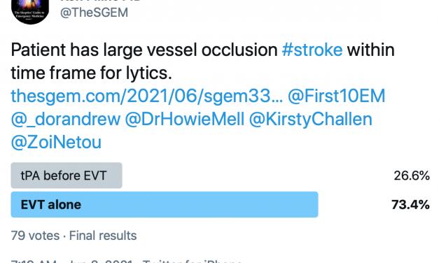 SGEM Twitter Poll #333